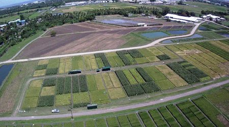 Introducing non-flooded crops in rice-dominated landscapes: Impact on carbon, nitrogen, and water cycles